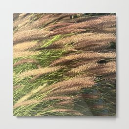 Reeds Blowing In the Pond Fine Art Photo Metal Print