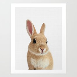 Bunny rabbit print Art Print