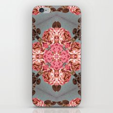 Serie Klai 020 iPhone & iPod Skin