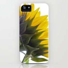Sunflower VI iPhone Case