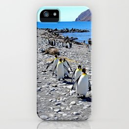 King Penguins returning to the colony iPhone Case