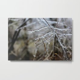 Icy Branches #6 Metal Print