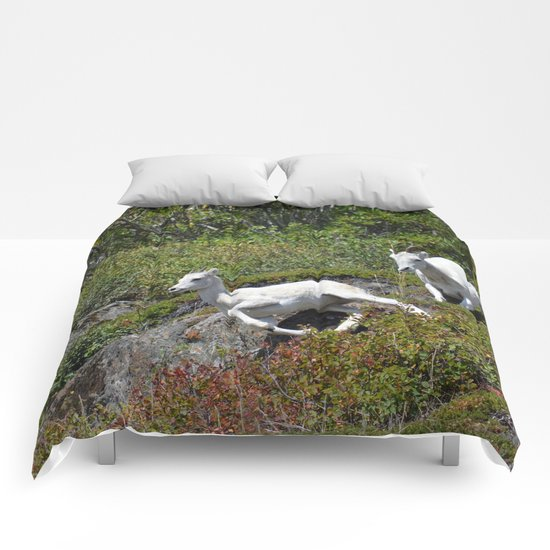 Ewe & Lamb Dall Sheep - II Comforters