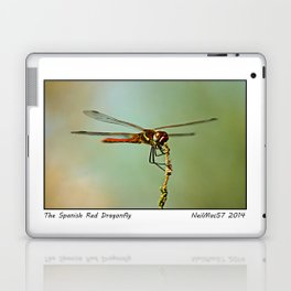 The Spanish Red Dragon Fly Laptop & iPad Skin