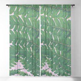 Fern Fronds Sheer Curtain
