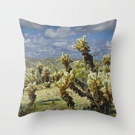 Cactus called teddy bear cholla No.0265 Throw Pillow