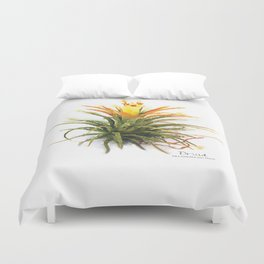 Tillandsia Druid Air Plant Watercolors Duvet Cover