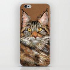 Modern Cat iPhone & iPod Skin