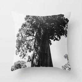 Sequoia National Park VI Throw Pillow