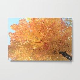 Autumn Explosion Metal Print