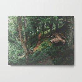 Fairytale Forest, Isle Of Mull Metal Print