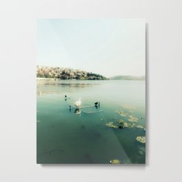 One Lake for Orestes Metal Print