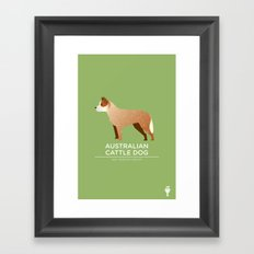 Australian Cattle Dog Framed Art Print