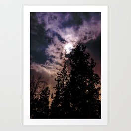 Sky & trees Art Print
