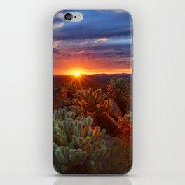 Cholla Sunset iPhone Skin