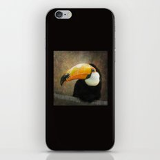 It's all about the Beak iPhone & iPod Skin