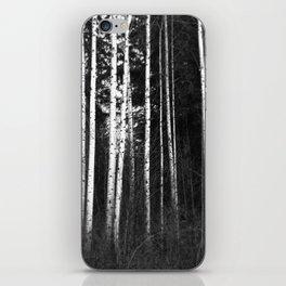 Birch Lines iPhone Skin