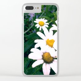 Daisies and Russian Sage Clear iPhone Case