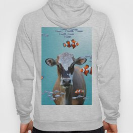 Costa Rica Cow - Clownfishes Collage underwater Hoody