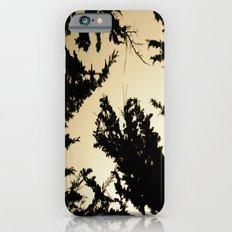 Exploration iPhone 6s Slim Case