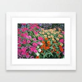 gardens 009 Framed Art Print