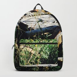 Forgotten Photography Backpack