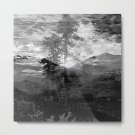 And With the Trees... Metal Print