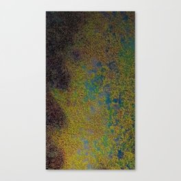 Earth overview texture Canvas Print