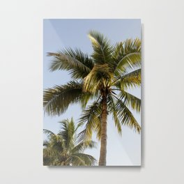 Palm Tree Paradise Metal Print