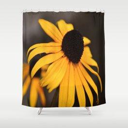 Black Eyed Susan  Shower Curtain