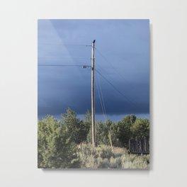 Black Crow on powerline wire in Taos, NM Metal Print