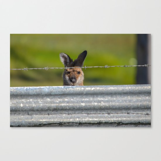 Can I come in? Canvas Print