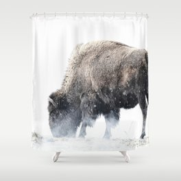 Bison grazing in a snowstorm Shower Curtain