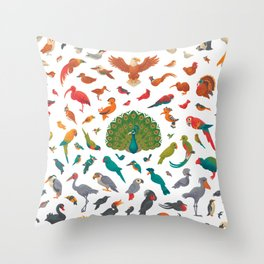 Aerial Spectrum : pattern Throw Pillow