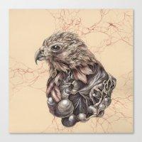 hawk Canvas Prints featuring Hawk by Adrian Chin