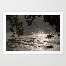 In A Misty Rain Art Print