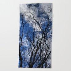 January Skies Beach Towel