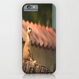 Meerkat Funny Observer #decor #society6 #buyart iPhone Case