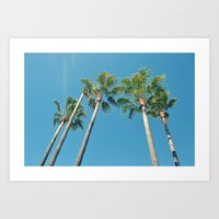 palm tree Art Prints featuring Palm tree by Laura James Cook