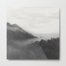 hill forest Metal Print
