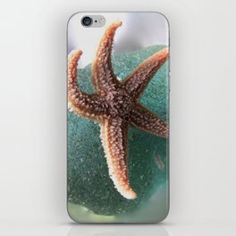 Starfish on Ocean Blue Sea Glass iPhone Skin