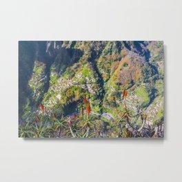 Top view on Madeira Metal Print