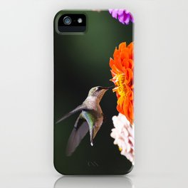 Hummingbird and Flowers iPhone Case