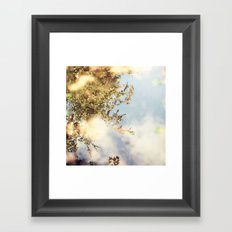 Reflecting Tree Framed Art Print