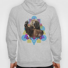 Goodbye Grizzly Hoody