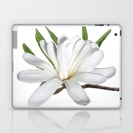 The Flower is the Star (Magnolia) Laptop & iPad Skin