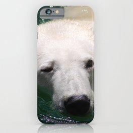 Polar bear's delight iPhone Case