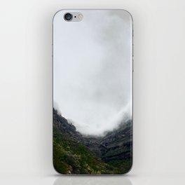 Graner Cranaria iPhone Skin