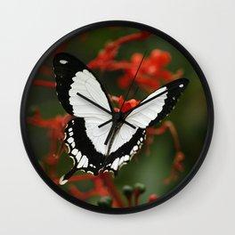 Mocker Swallowtail Butterfly Wall Clock