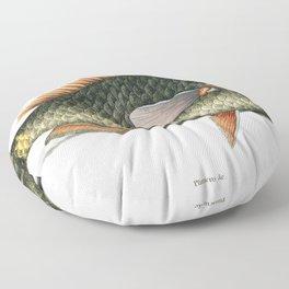 Parrot Fish (Psittacus Piscis Viridis) from The natural history of Carolina Florida and the Bahama I Floor Pillow